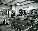 Meyer Library